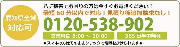 徳島県蜂駆除・巣の撤去電話お問い合わせ「0120-538-902」