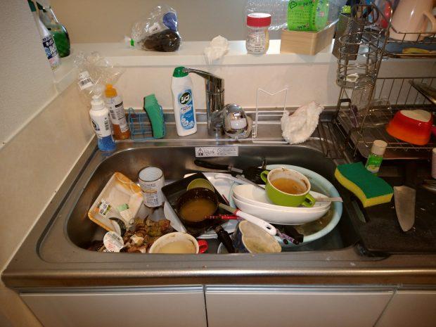 キッチン周りの清掃とごみの回収を行いました!