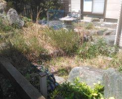 【鳴門市】草刈りと庭木の伐採のご依頼☆手を付けらず困っていたお庭がきれいになり喜んでいただけました!